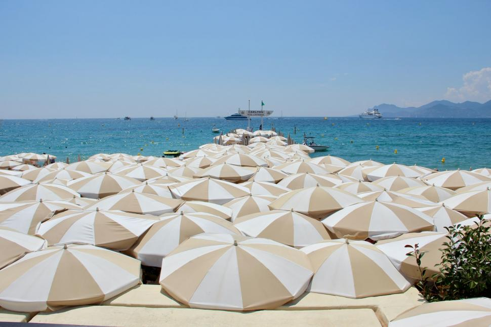 Hotel Alnea - Cannes
